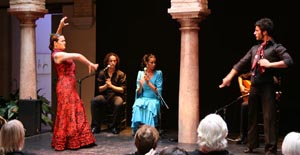 Information and ticket sales to for Espectaculo flamenco seville sevilla